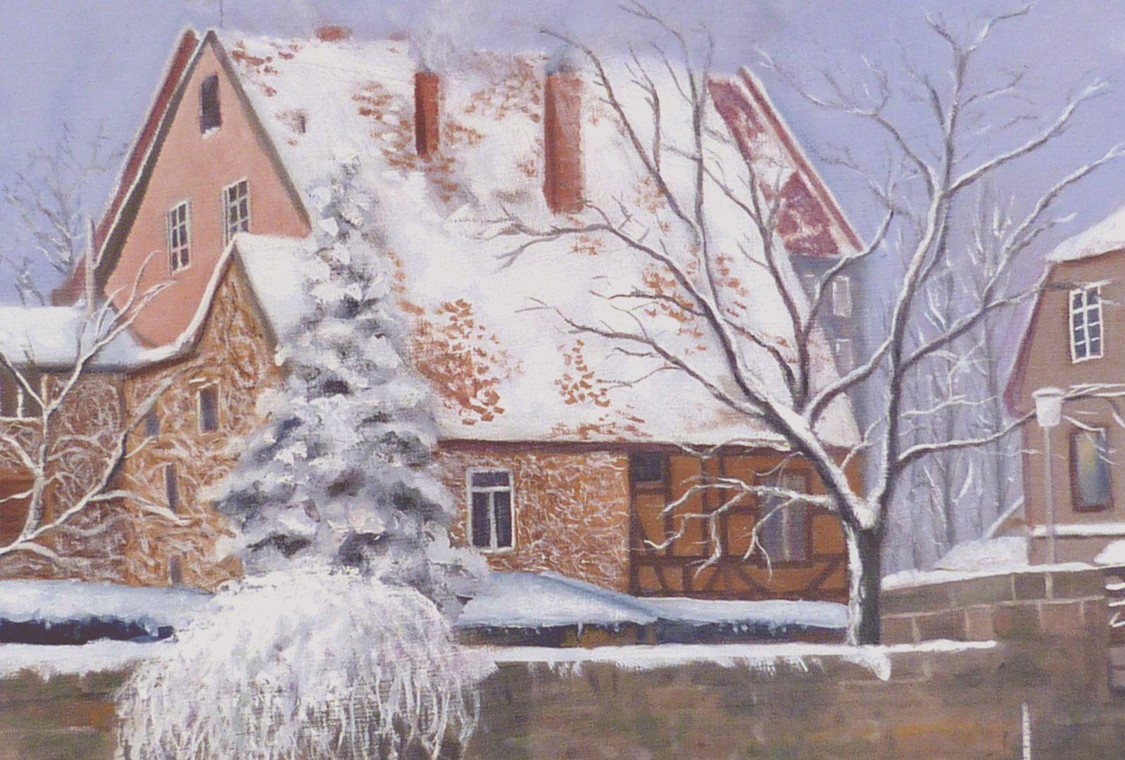 The Nuremberg Kleinweidenmühlsteg in winter Left half of the picture, detail