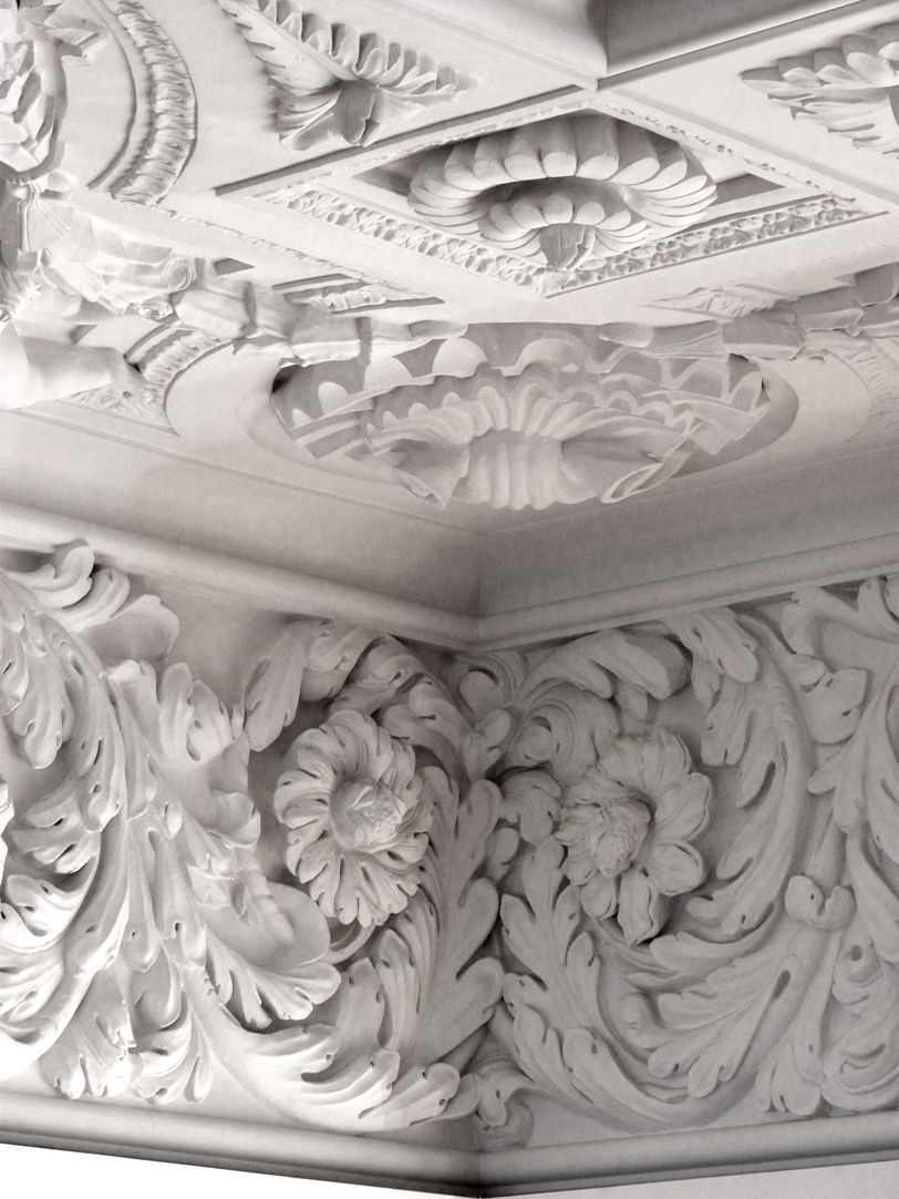 Brentano Hall Stucco flowers of the ceiling and cornice