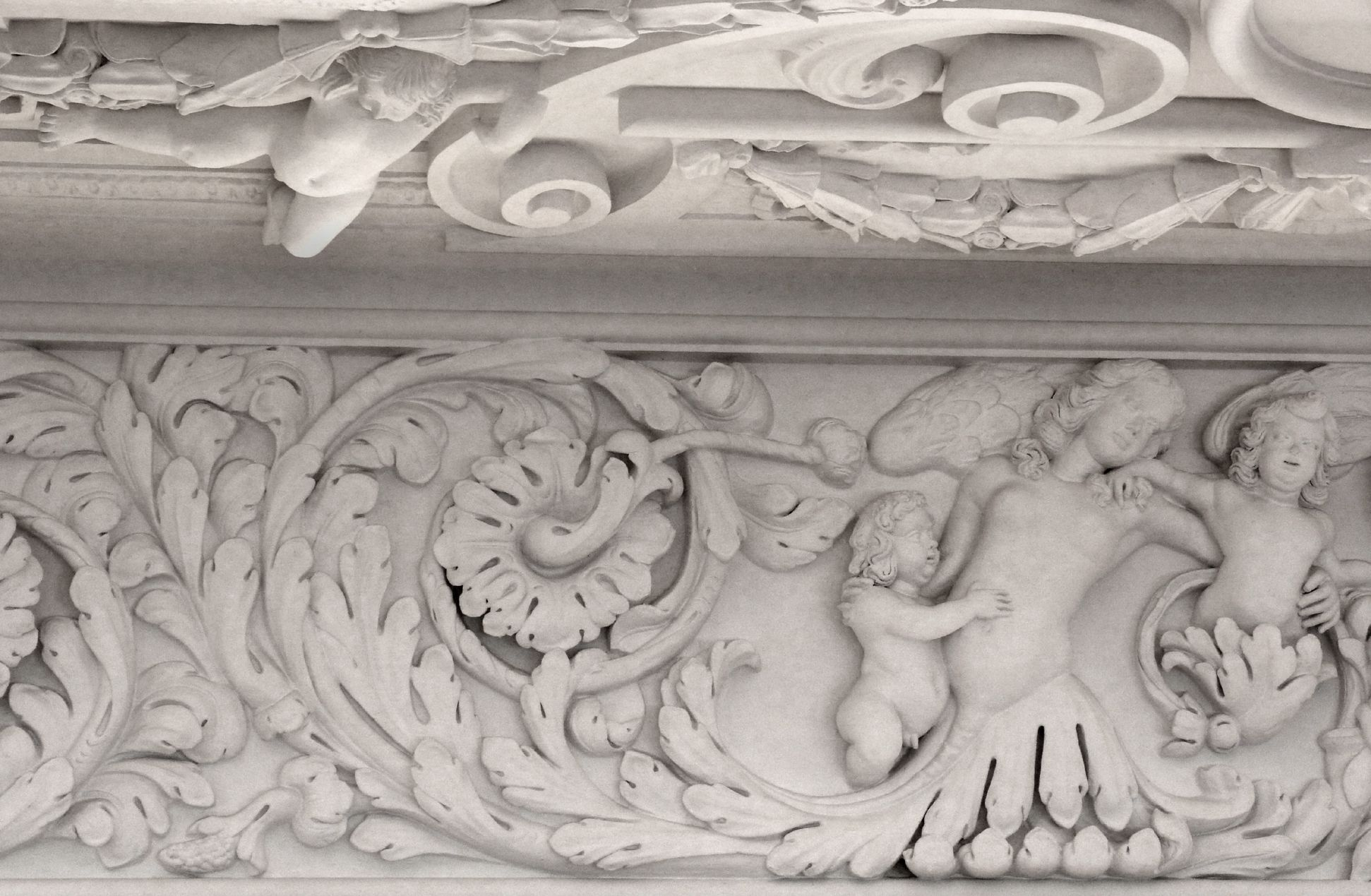 Brentano Hall Acanthus cornice and mythical creatures and putti