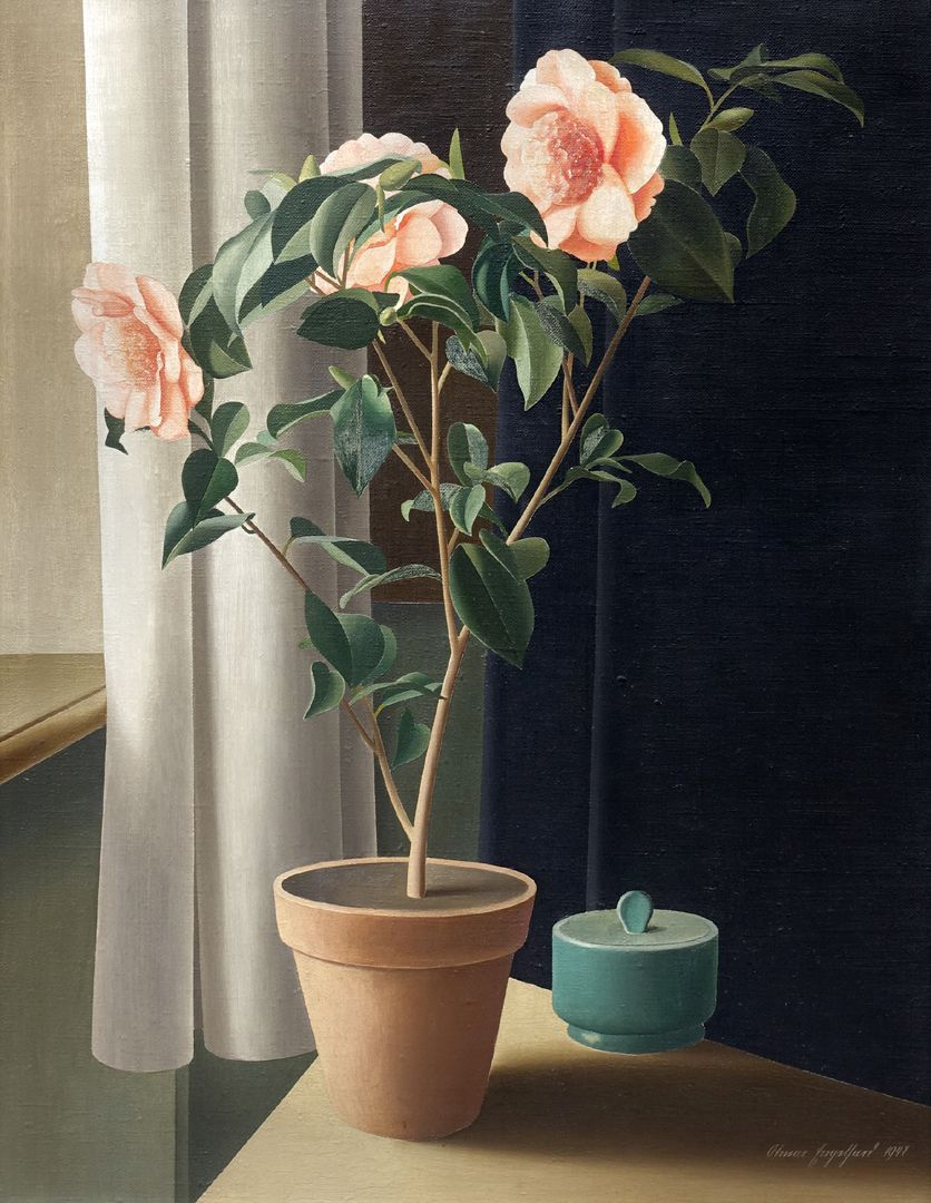 Flowering plant, camelia