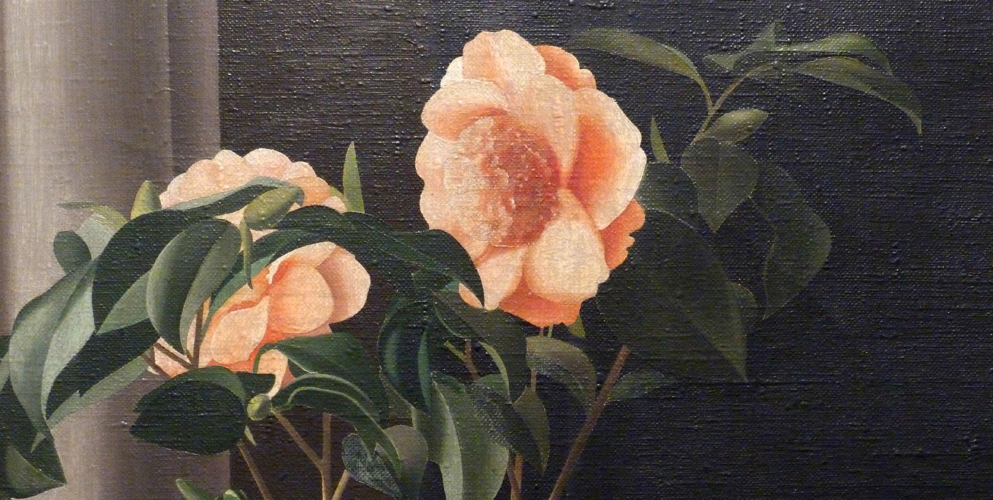 Flowering plant, camelia Detail, blossoms