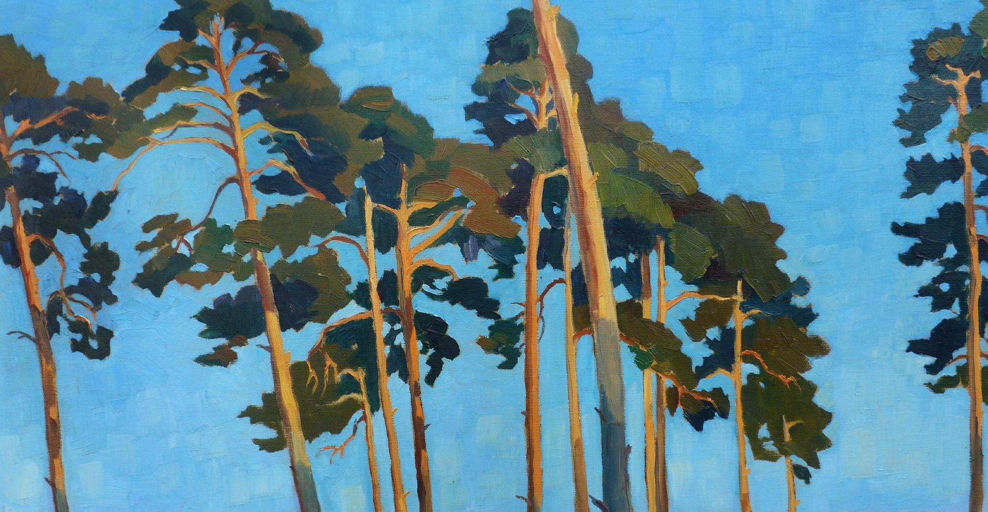 Pines Detail view