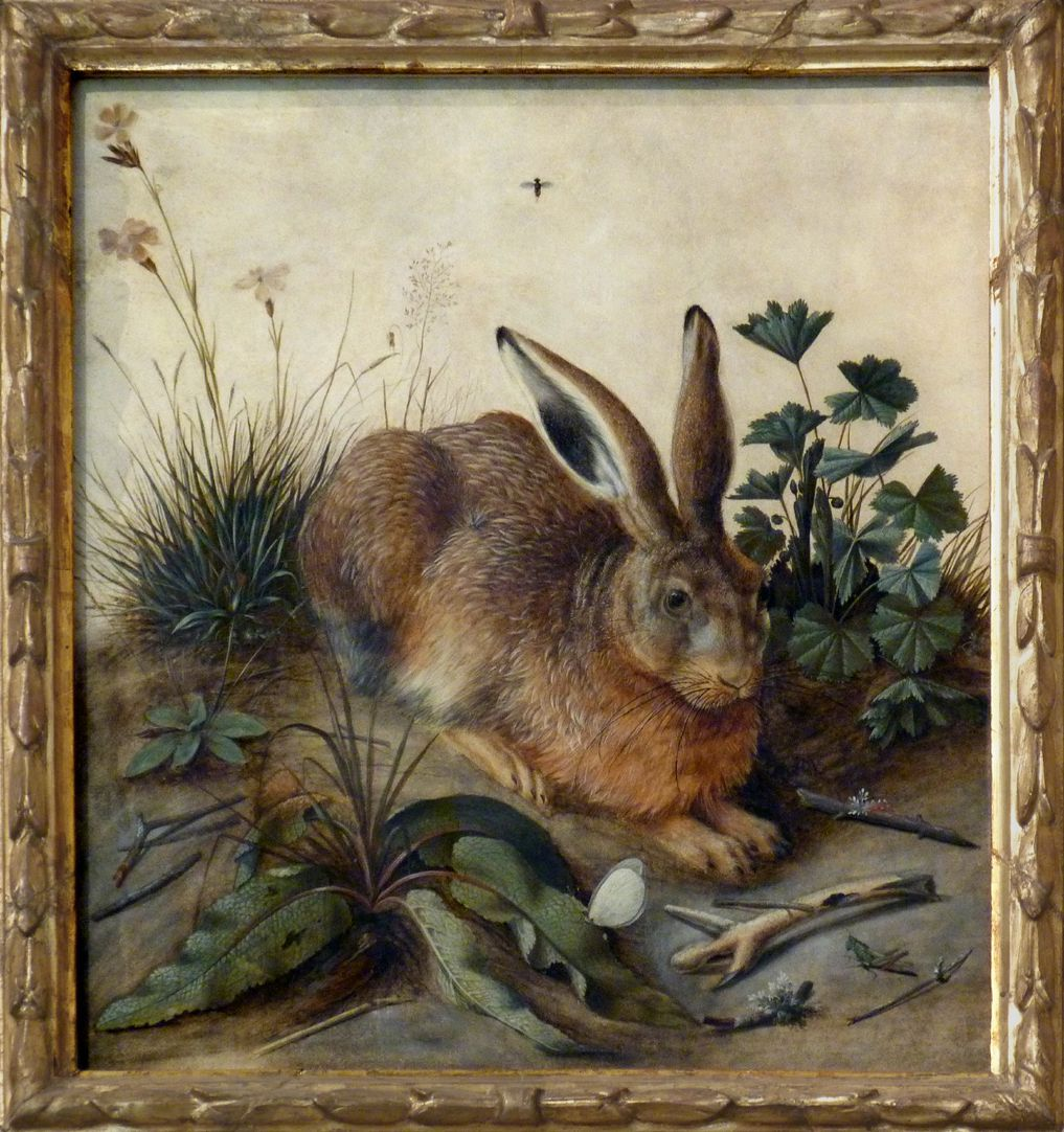 The hare (Rome) General view