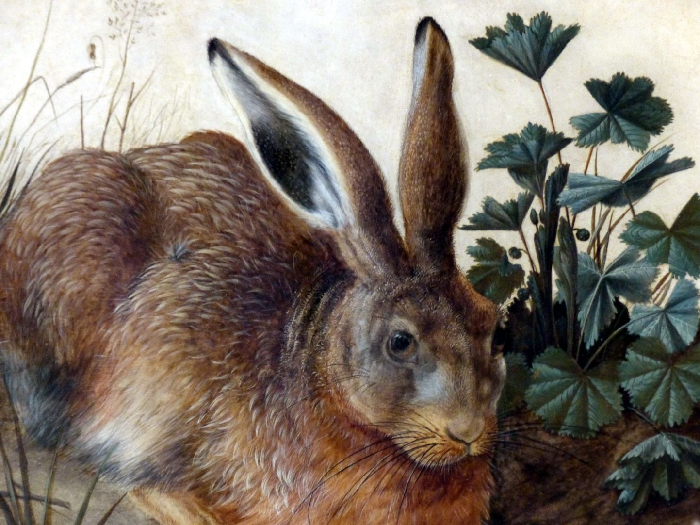 The hare (Rome) Detail