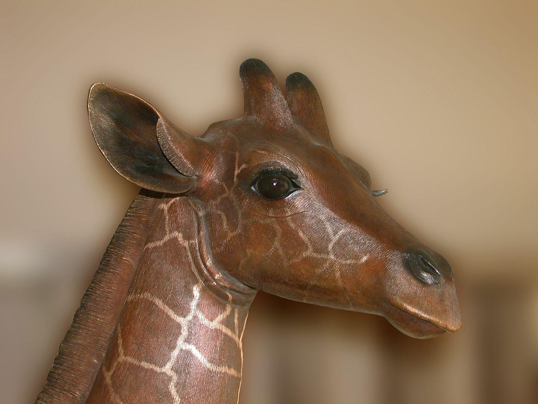 Reticulated giraffe Head, side view