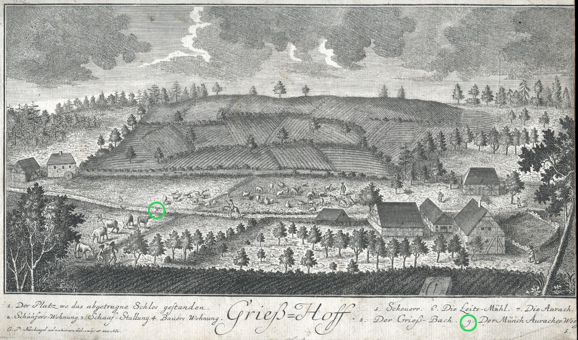Grieß=Hoff  (Griess farm) Munch-Aurach-way