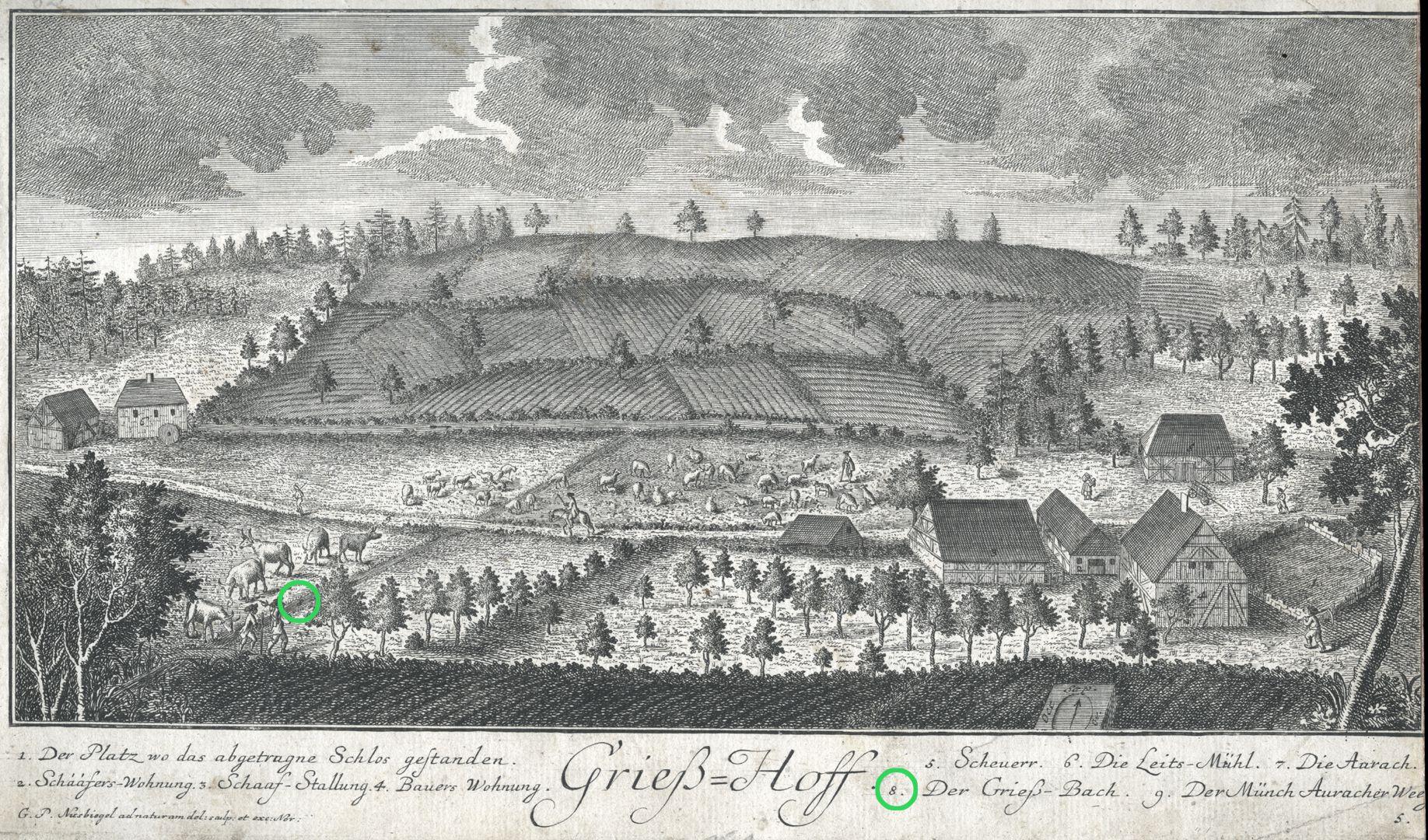 Grieß=Hoff  (Griess farm) Brook Griess