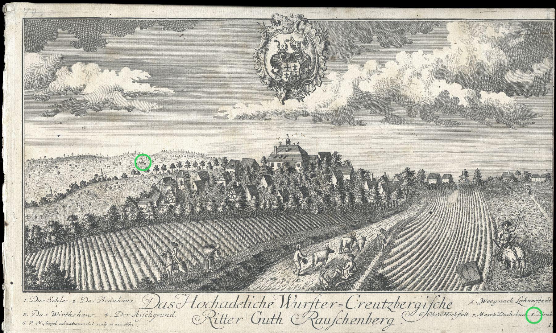 High-nobility-manor Rauschenberg of Wurster-Creutzberg Pear tree