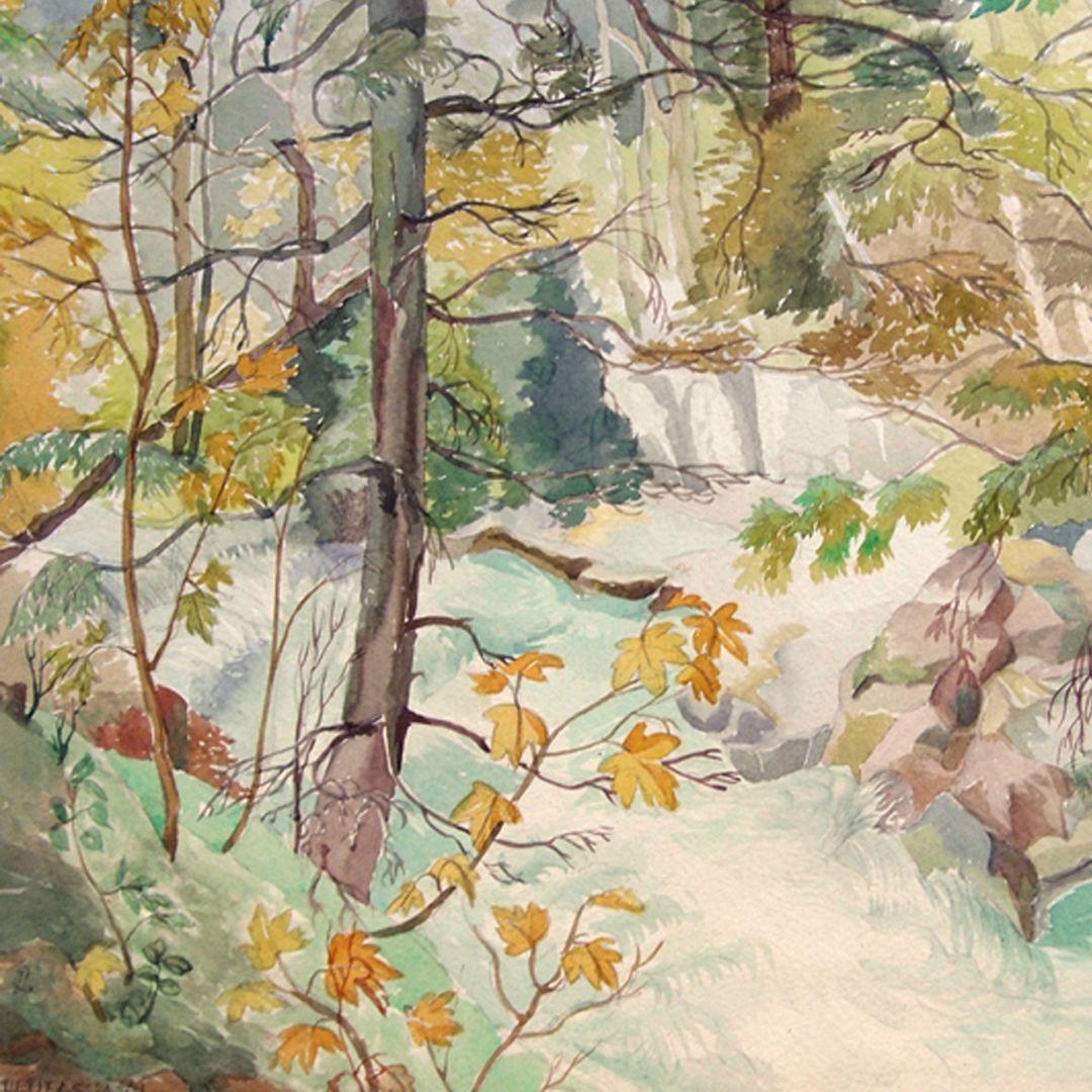 Leutasch Valley Detail