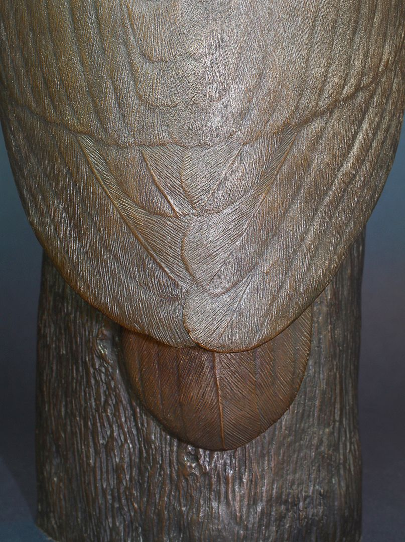 Tawny owl Rear view with wing feathers, tail feather and tree trunk