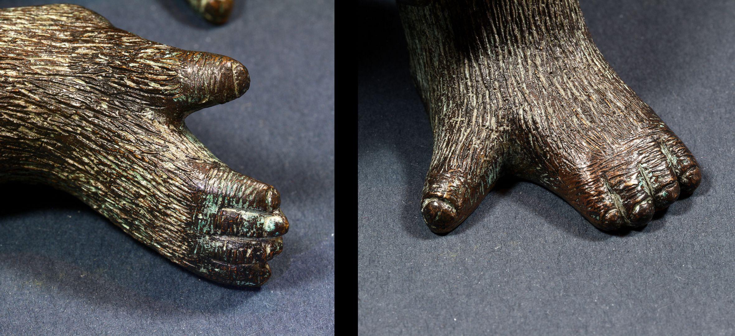 Westlicher Flachlandgorilla Füße